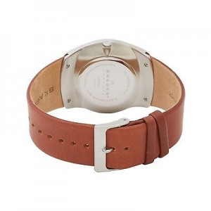 skagen-back-photo