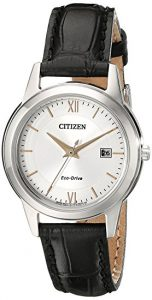 Citizen Women's FE1086-04A Eco-Drive Watch Review