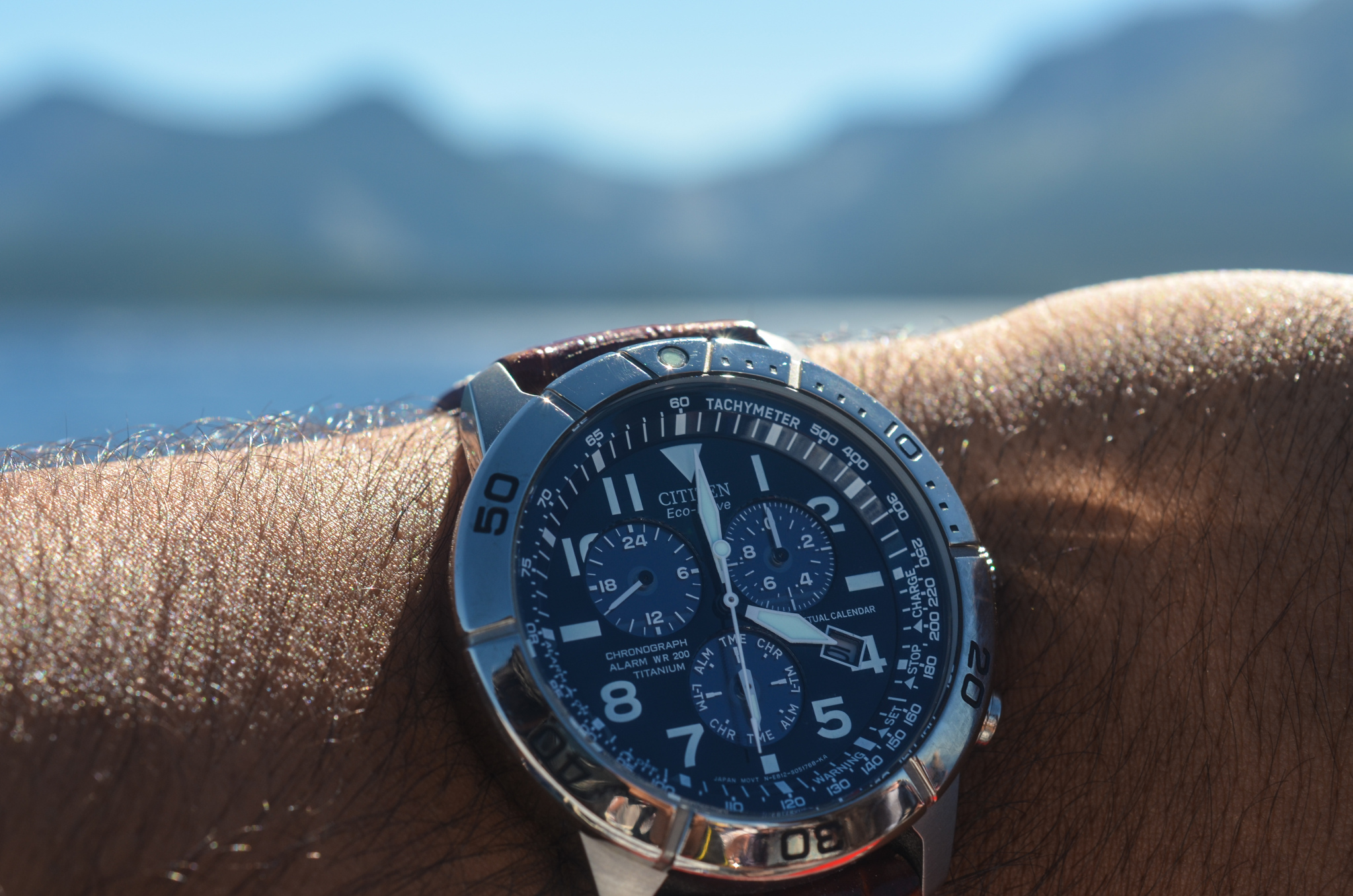 How much does a citizen eco drive watch cost?