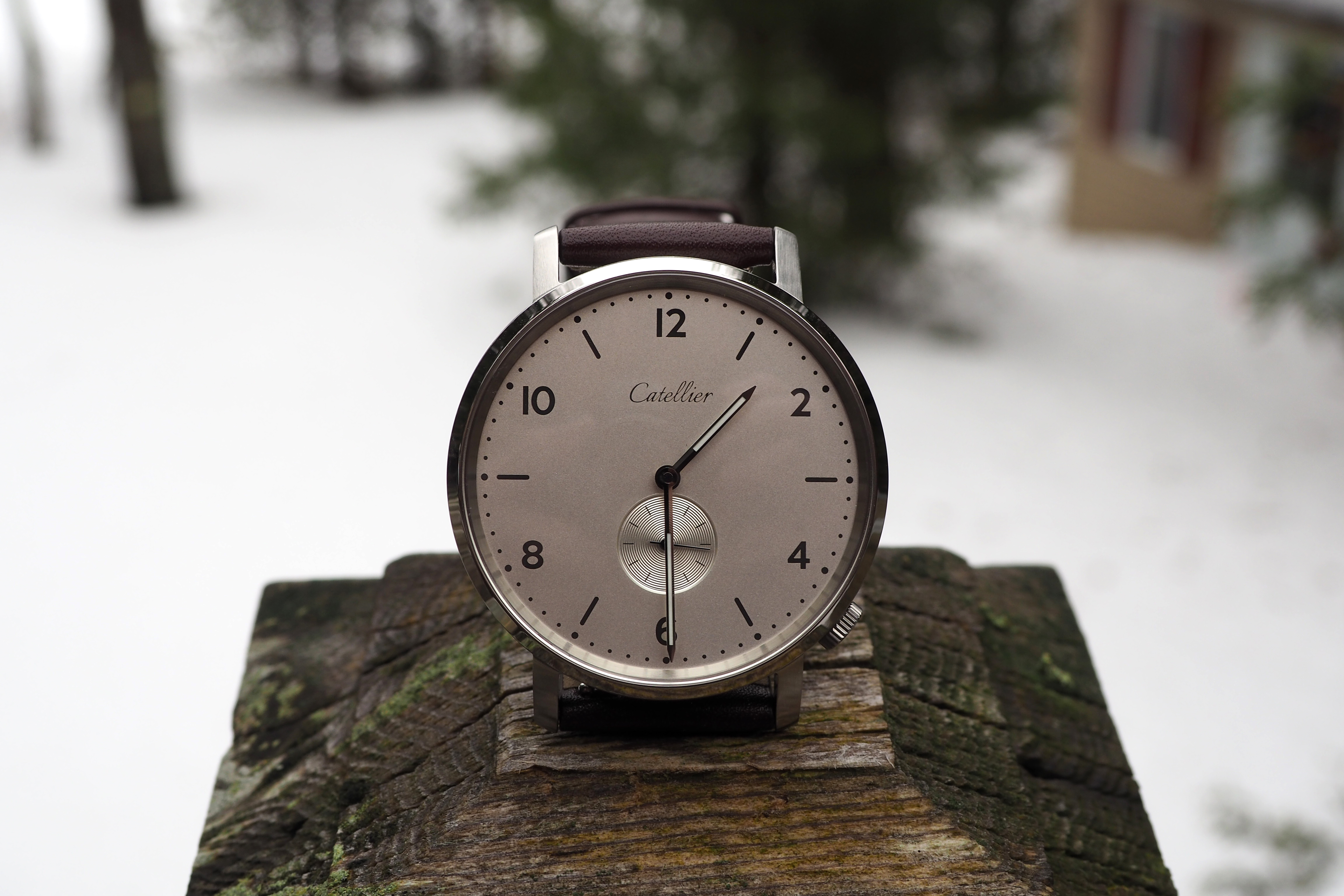 Eoniq Alster Custom Watch Review