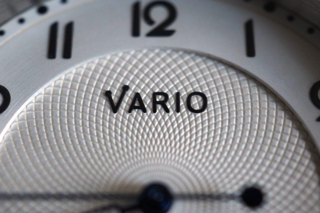 Macro view of Vario logo