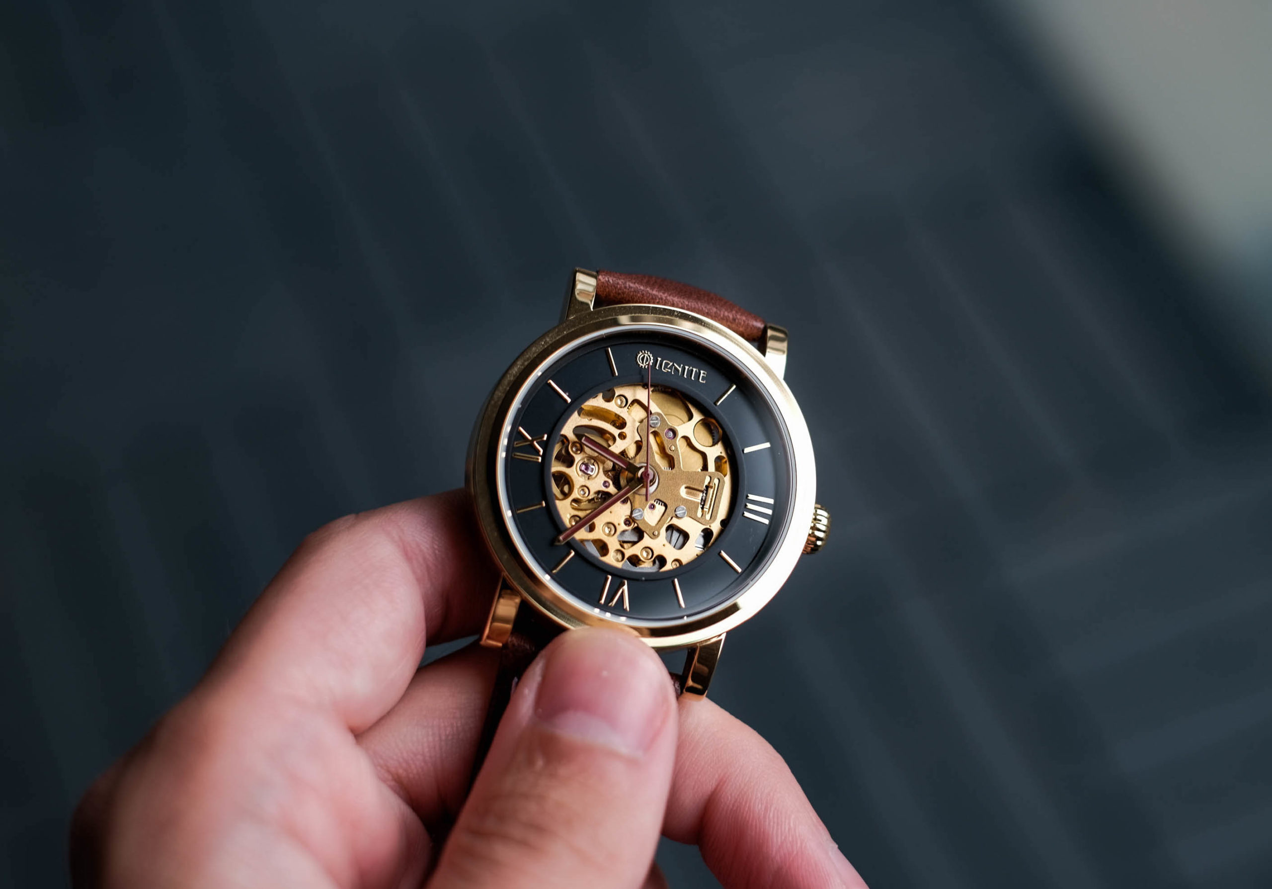 Ignite Automatic Skeleton Watch Review